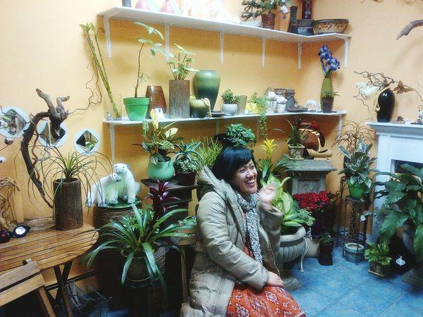 Indoor Garden Indoor Gardening