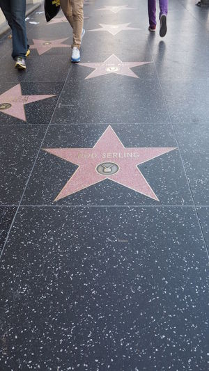 Day Human Leg Names Road Star Starting Line Universal Studios