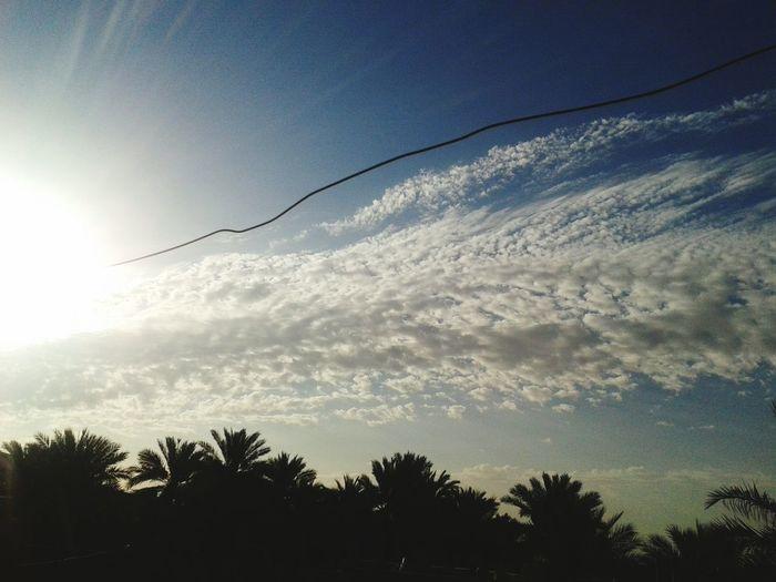 صباح اليوم التاسع والعشرين من رمضان سبحان المصور قروب مصورين العرب مصوري العرب متليلي الشعانبة يالله ياكريم ياعليم ياواسع يانور.