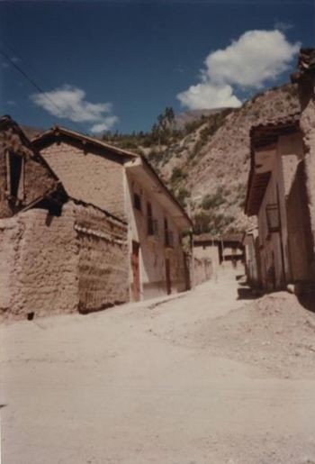View of houses in village