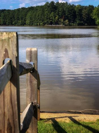 Where the fence ends Water Lake Nature Reflection Day Sunlight Plant Wood - Material Beauty In Nature Scenics - Nature Tranquility Non-urban Scene Outdoors Tranquil Scene Tree No People Protection Post Wooden Post Security