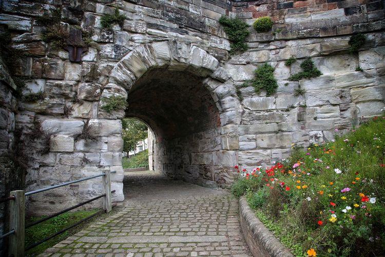 Walkway leading towards archway