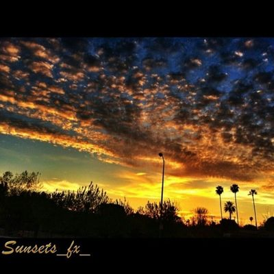 Presenting today's sunsets_fx_ featured artist: lowbrowser show your appreciation for this outstanding artist by leaving a like and visit their amazing gallery! For your chance to be featured: follow: sunsets_fx_ tag: #sunsets_fx