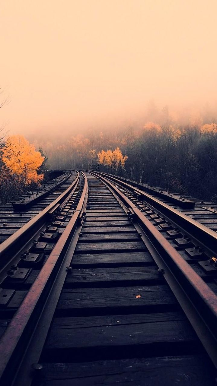 railroad track, rail transportation, transportation, sunset, tree, no people, nature, the way forward, beauty in nature, outdoors, sky, day