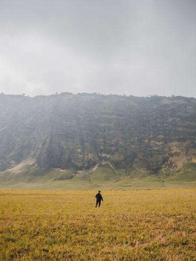 Man walking on green landscape against clear sky