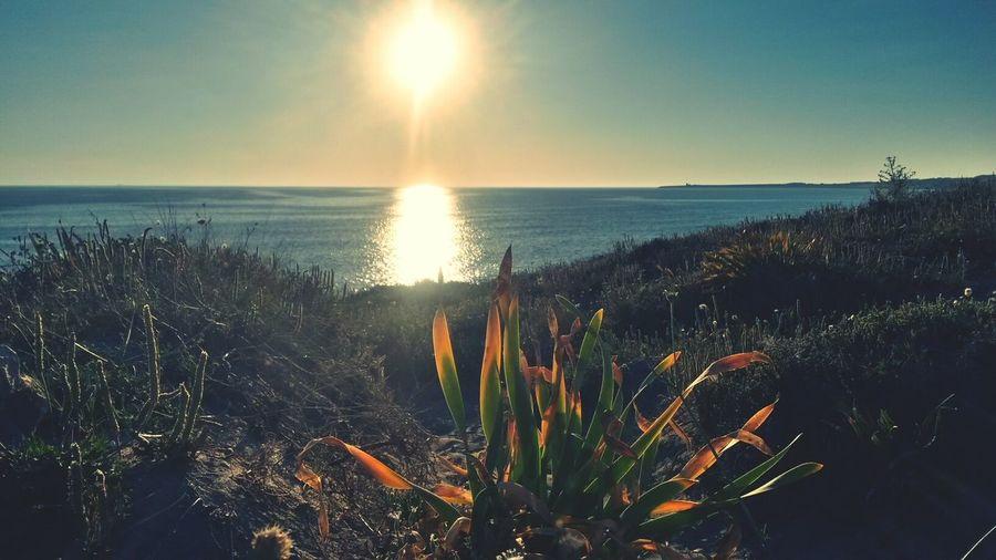 Sardinia Sardegna Italy  Sangiovannidisinis Spiaggia Sole Mare Eye Em Nature Lover