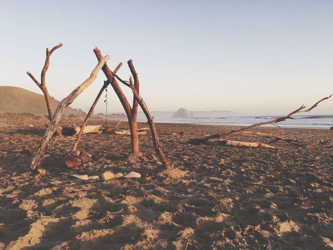 Morro Bay Beach Driftwood Art Teepee Sunset Golden Hour Cayucos EyeEmNewHere