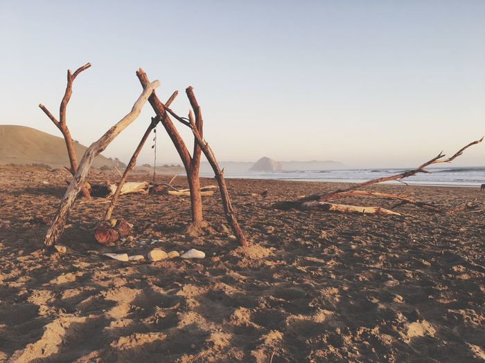 Morro Bay Beach Driftwood Art Teepee Sunset Golden Hour Cayucos EyeEmNewHere