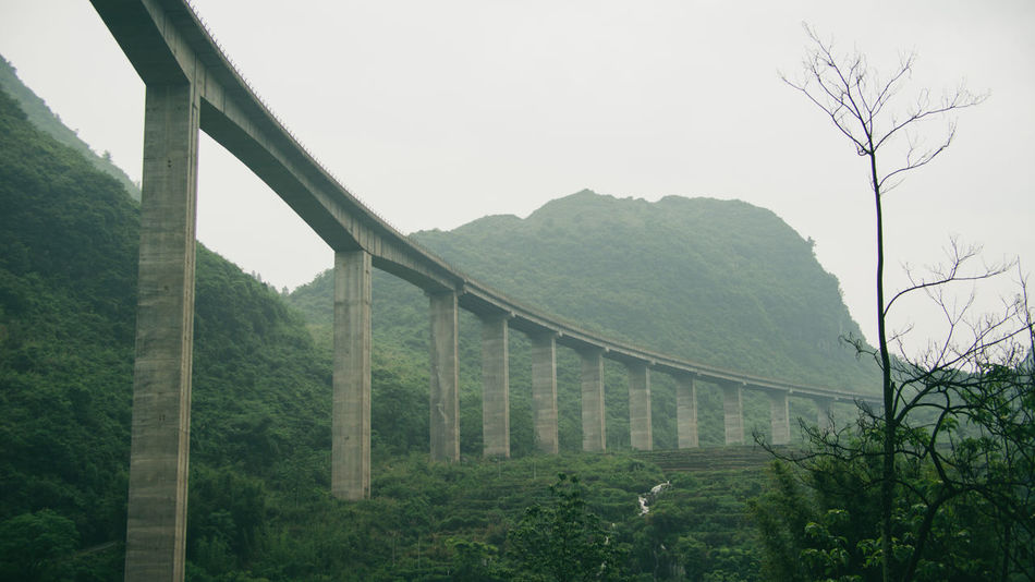 Beauty In Nature Bridge Bridge - Man Made Structure Built Structure China Connection Guangzhou Landscape Mountain Nature Outdoors Plant Tree