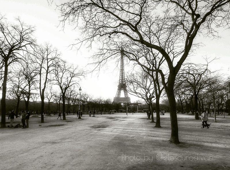 Siempre nos quedará París. Paris Champdemars Tour Eiffel