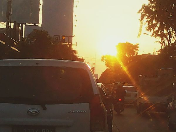 Surabaya City Sunset And Trees Crowded in Surabaya, Indonesia