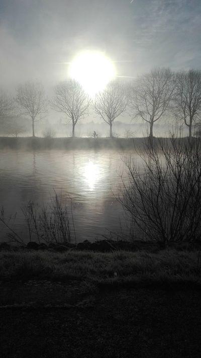 Belgium Schelde Morning Sky Cold Cycling Around