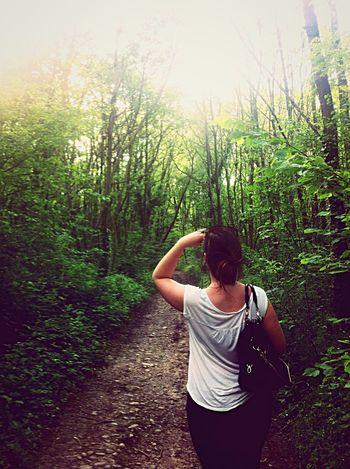 Géocaching en forêt :D