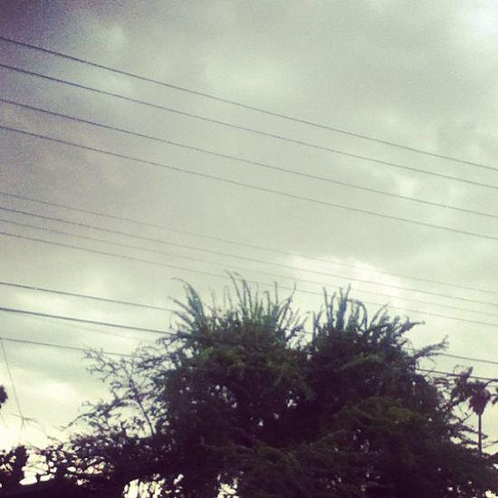 Rainstagram. Lluvia Apocalipsis Loveit