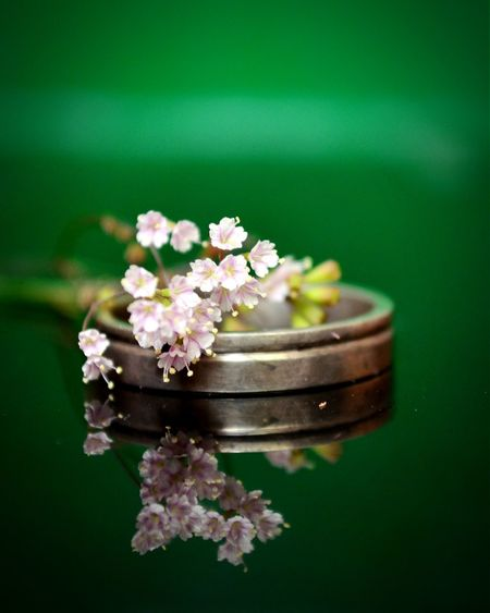 Close-up of ring with flowers