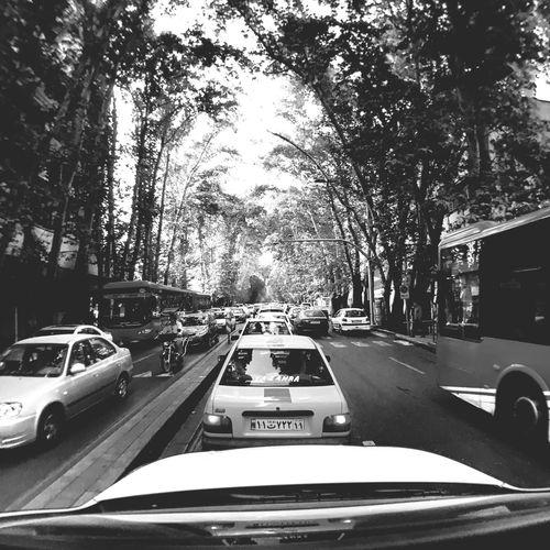 Tehran Iran Valiasr Street Hanging Out Hello World Taking Photos Enjoying Life EyeEm Bnw Feeling Good