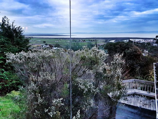 Looking west over the Firth of Thames. Wintertime Winter Grey Sky Sea And Sky Vista 2016 06 21