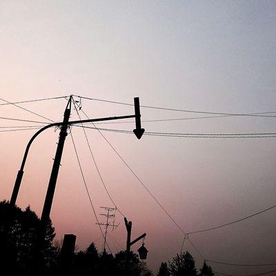 風が冷たい お散歩Photo 自宅近く 加工あり 電柱時々矢印
