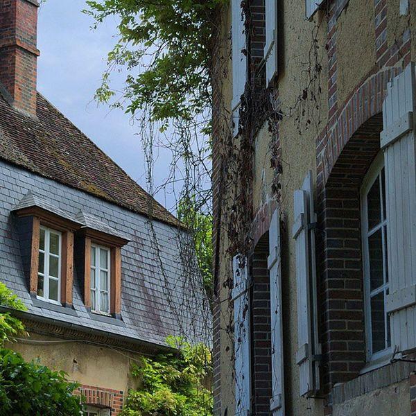 Arrête verticale Villierssaintbenoit Puisaye Yonnetourisme Yonne bourgogne architecturerurale igersbourgogne grainedenature