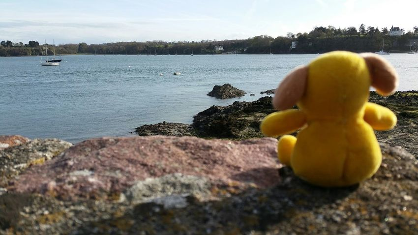 Bretagne Bretagne Lovers Sea Spring Beautiful Nature France Peluche Water RePicture Travel Capturing Freedom