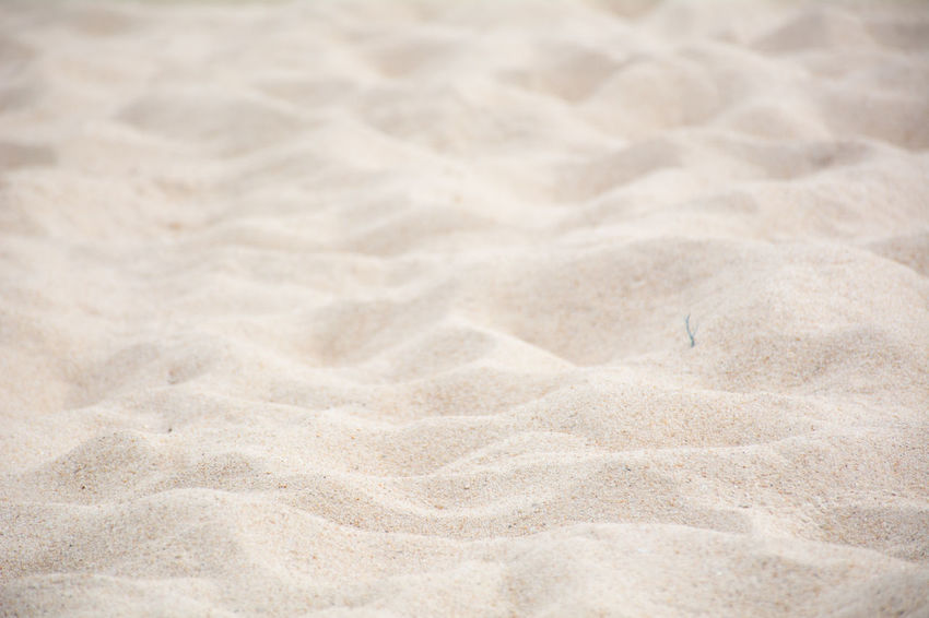 Backgrounds Beach Beach Sand Beauty In Nature Close-up Day Nature No People Outdoors Park Sand Sand Beack Sand Dune Sand Park Sand Patterns Sand Texture