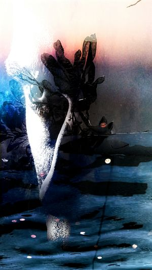 Abstract Creative Edit Eclectic Ethereal Abstract Art Philosophical Search Truth Light And Shadow