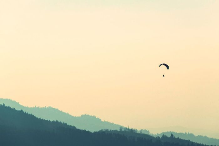 free Like a bird Blackforest Blackforest Germany Mood Schwarzwald Schwarzwaldliebe Schwarzwalders Paragliding Parachute Flying Extreme Sports Tree Mountain Adventure Sunset Mid-air Fly Gliding Parasailing Aerobatics Airshow Kiteboarding Skydiving