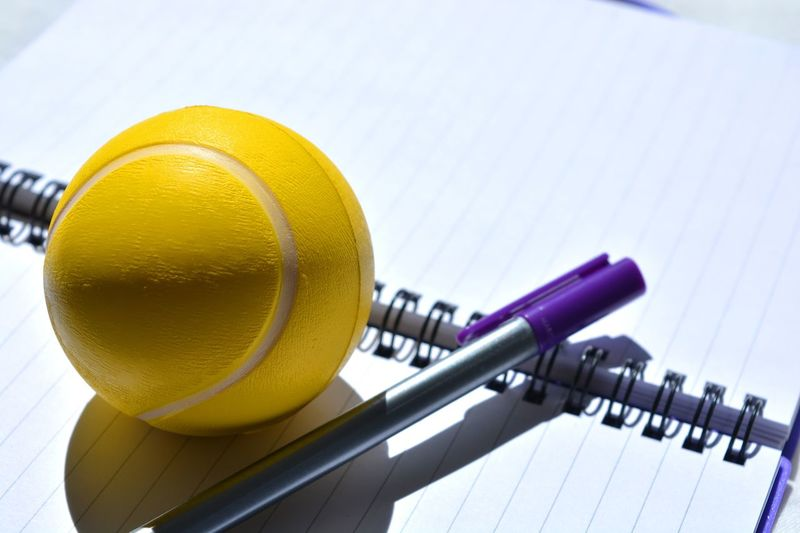 High angle view of pen and ball on diary