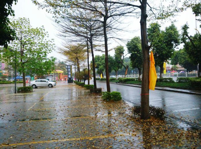 好大的雨 好大的雨