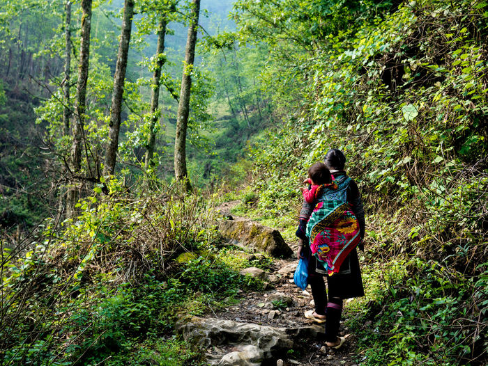 Adventure Beauty In Nature Forest Hmong Lifestyles Natural Nature Nature Rear View Sapa Vietnam Sapa, Vietnam Scenics The Way Forward Travelling Trekking Vietnam