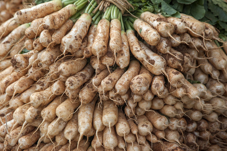 market for vegetable, fruit and fishery Backgrounds Close-up Daikon Day Food Food And Drink For Sale Freshness Full Frame Healthy Eating High Angle View Horizontal Indoors  Large Group Of Objects Market Market Stall No People Retail  Vegetable White Radish