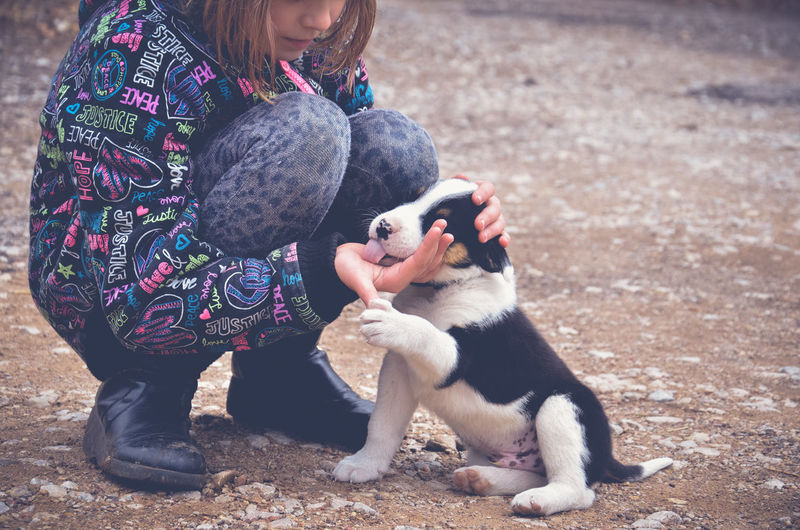 Low section of teenage girl playing with puppy on land