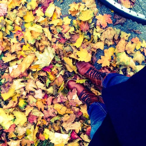Autumn Colors Autum Autumn Collection Colorful Autumn Leaves Weather Photography Autum Weather Thetimeofyear The Time Of Year Seasons Colletion Shoes Seasonscollection Shoes Of The Day All Sorts Of Colours EyeEm Nature Lover EyeEm Gallery Eyeem Season