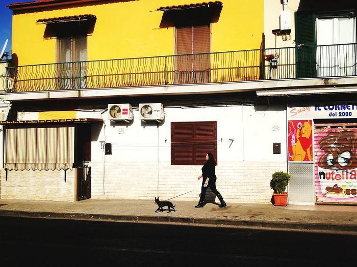 Napoli Europe Napoli Italy Street Photography Mobile Photography Yellow Dog Walking Woman