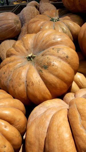 EyeEm Selects No People Brown Full Frame Food Day Nature Close-up Punpkin Pumpkins On Display Pumpkin Season October Autumn Autumn Fruits