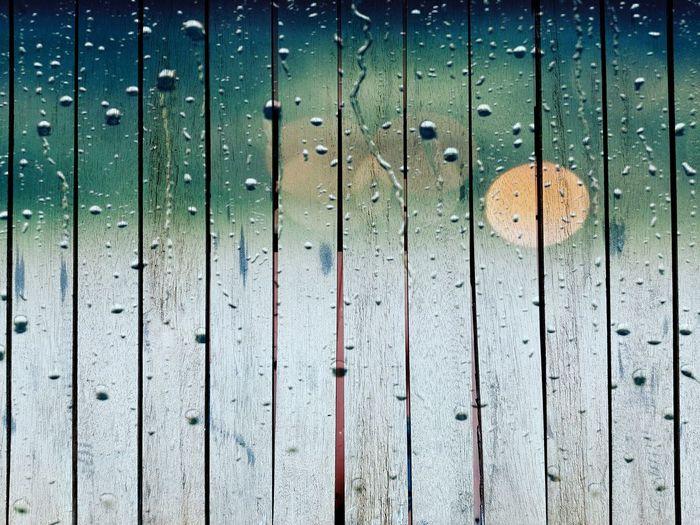 Full frame shot of wet wood