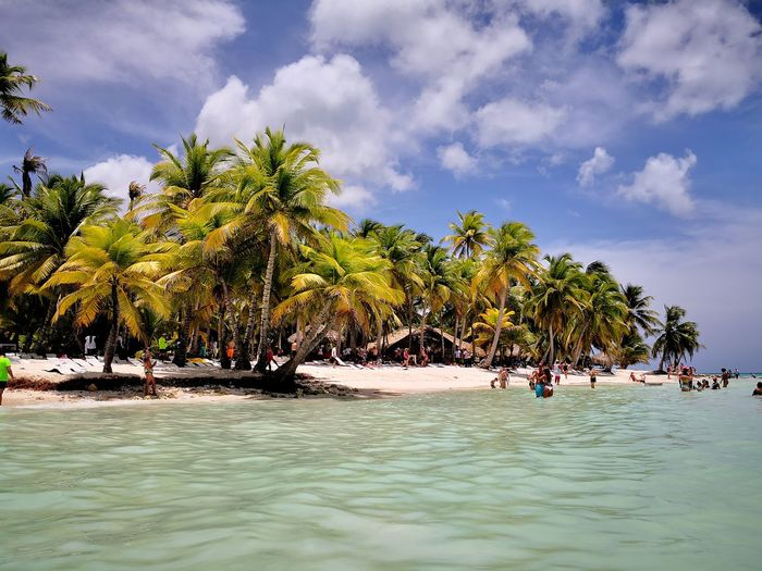 Saona, Republica Dominicana Tree Water Palm Tree Sea Beach Sand Coconut Full Length Tropical Climate Sunny