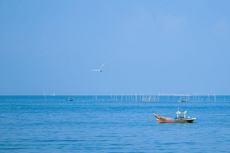 Sailboat in sea against sky