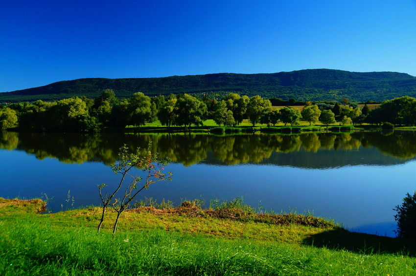 Morning lake at Pilisszántó Morning Beauty In Nature Blue Blue Sky Clear Sky Day Forest Grass Lake Landscape Mountain Nature No People Outdoors Pilis Pilisszántó Reflection Scenics Sky Summer Tranquil Scene Tranquility Tree Water