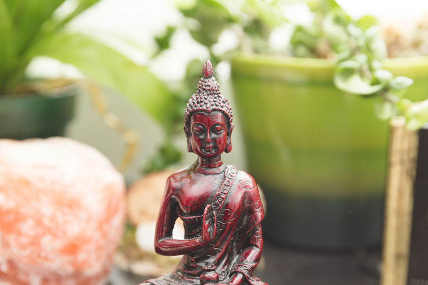 Buddha figure near plants and other decorations. Asian Culture Buddha Calmness EyeEmNewHere SPIRITUAL HEALING Spiritual Place Spirituality Close-up Day Focus On Foreground Human Representation Idol Outdoors Place Of Worship Religion Sculpture Spiritual Spirituality Statue