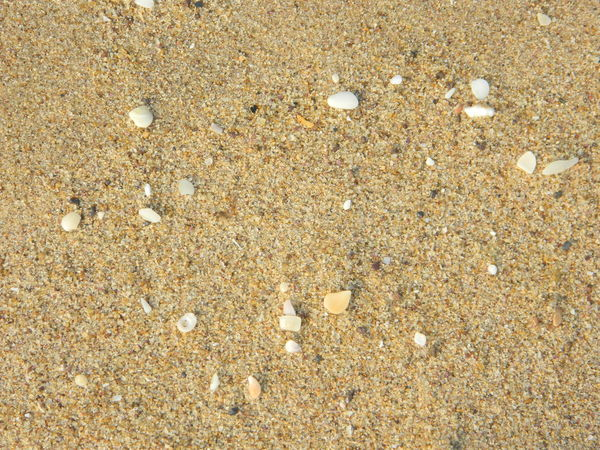 Original No Edit/no Filter Just Like That Enjoying Life Enjoying The Moment Enjoying Beach