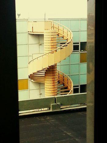 Hospital Precision