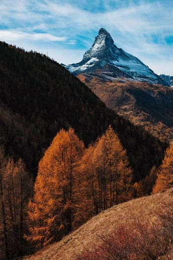 Autumn vibes. Mountain Beauty In Nature Scenics Nature Tranquility Tranquil Scene Landscape Mountain Range Sky Cold Temperature Snow No People Outdoors Day Peak Scenery Tree Perspectives On Nature The Great Outdoors - 2018 EyeEm Awards