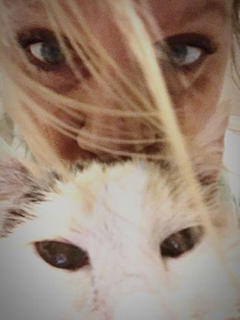 Cat eyes ..🐱. Lilibug And I Eyes Lilibug Yes, Another LiliBug Pic