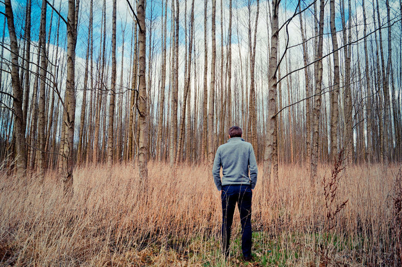 Rear View Of Man Standing Against Trees At Forest