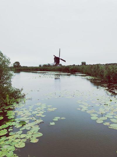 Kinderdijk Holland Dutch Cities Dutch Landscape Windmill Water Sky Nature Clear Sky Copy Space Architecture No People