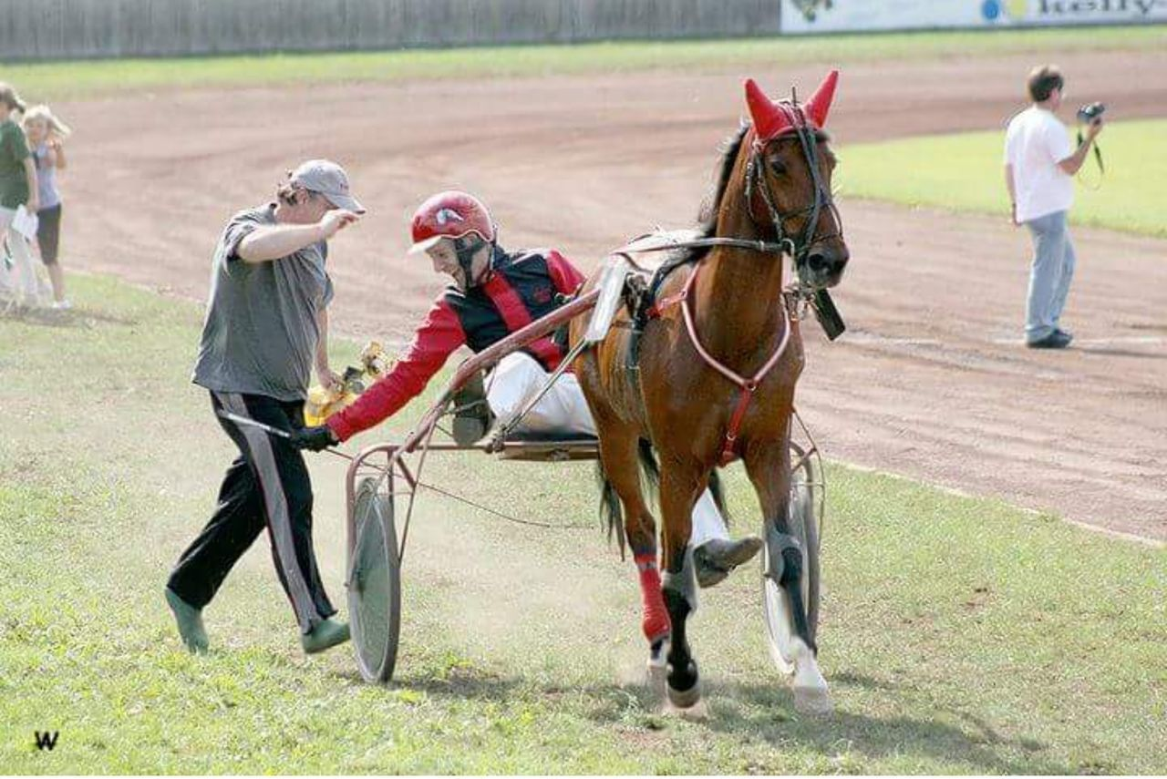 horse, competition, sport, horseback riding, jockey, gambling, adult, only men, riding, sports race, domestic animals, adults only, field, people, competitive sport, grass, full length, men, playing field, outdoors, one man only, one person, horse racing, mammal, day, sports track