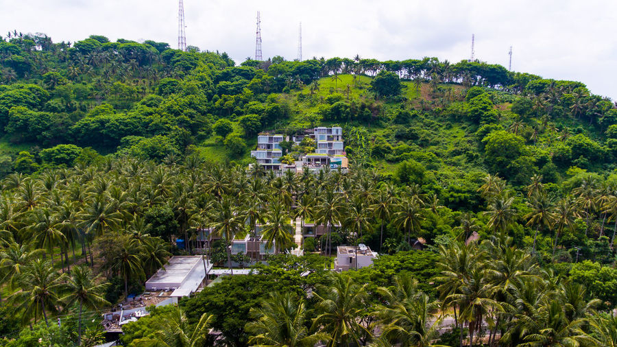 the beautiful Svarga resort of the island of Lombok. Plant Tree Architecture Green Color Building Exterior Built Structure Growth Nature Day Foliage No People Building Lush Foliage High Angle View Outdoors Sky City Transportation Mode Of Transportation Beauty In Nature Lombok Forest Resort Resort Hotel Vacations