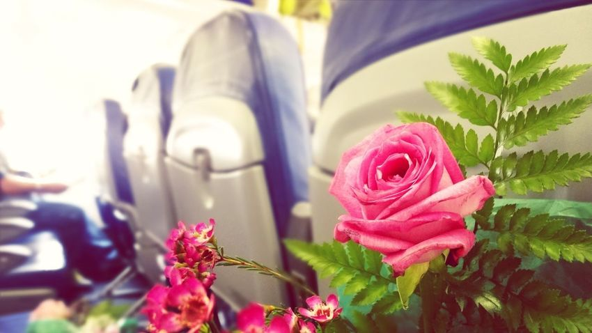 Presents Feeling Sad But Smiling Goodbye Airplane