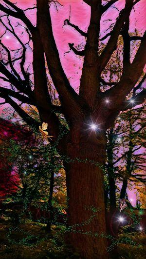 Wenn träme Wirklichkrit werden ....🌼🌸 Fee Elfe Dreamland Nature ArtWork